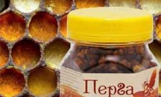 Корисні і лікувальні властивості бджолиної перги, як приймати