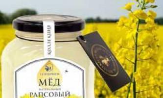 Корисні і лікувальні властивості ріпакової меду, його характеристики і протипоказання