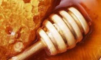Корисні властивості бджолиного меду, його калорійність і склад, протипоказання
