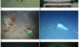 Поліетиленові пакети дісталися до найглибших підводних каньйонів