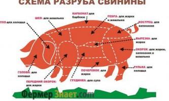 Правила оброблення свинячої туші