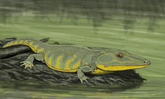 Предки амфібій: мастодонозавр