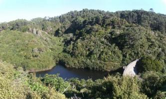 Природа нової зеландії: від морського дна до піднебесся
