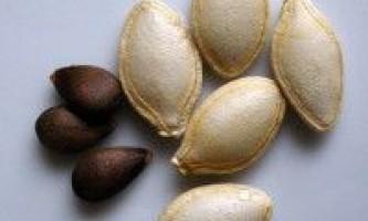 Ознаки дозрівання насінників (насіння)