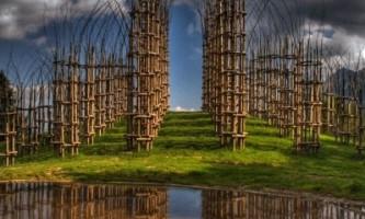Проект `` живого `` храму від джуліано маурі (giuliano mauri)
