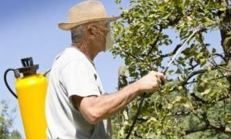 Профілактін для саду: як і коли використовувати, для чого