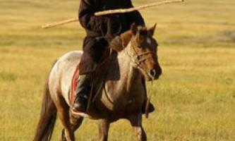 Походження і екстер`єр коня монгольської породи
