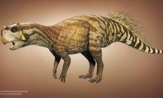 Пситтакозавров: динозавр-папуга