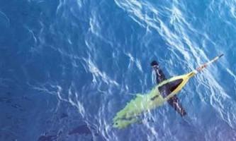 Роботи-дельфіни допомагають вченим з`ясувати причини посиленого танення антарктичних льодів