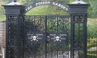 Сад альнвіка - сад найнебезпечніших рослин