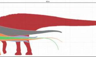 Найбільші динозаври