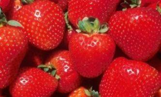 Найсмачніші сорти полуниці