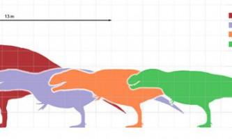 Найдовший хижий динозавр