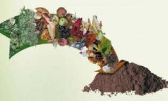 Секрет застосування органічних добрив