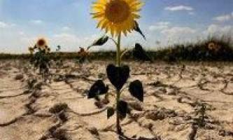 Система сталого ведення сільського господарства в умовах посухи