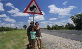 Слон роздавив машину туристів