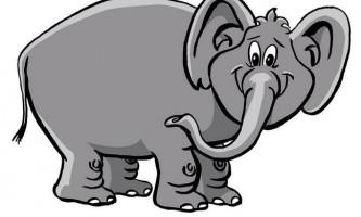 Слони можуть розрізняти звуки на відстані в 200 кілометрів