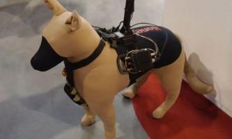 Собак k9 одягнуть в «розумні» жилети