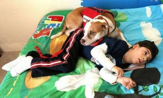 Собака допомагає хлопчикові-інваліду впоратися з хворобою