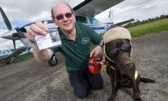 Собака вперше в історії отримала права пілота
