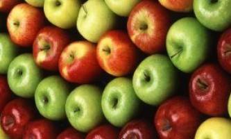 Сорти яблунь. Фото різних сортів.