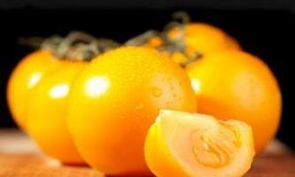 Сорти жовтих томатів: опису, особливості посадки і догляду