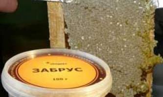Склад, корисні і лікувальні властивості бджолиного забруса, протипоказання