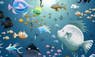 Сумісність акваріумних рибок: поради і рекомендації