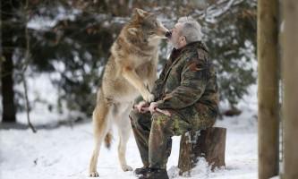 Серед вовків