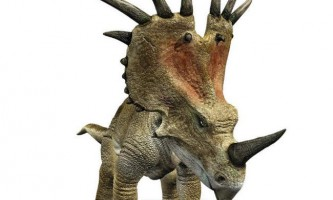 Стиракозавр - травоїдний з небезпечними рогами