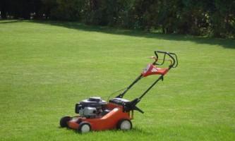 Стрижка газону: коли і як стригти газон?