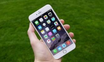 Студентам запропонують створити мобільний додаток для пошуку зниклих вихованців