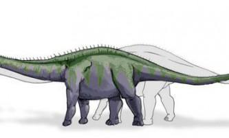 Суперзавр, ультрозавр