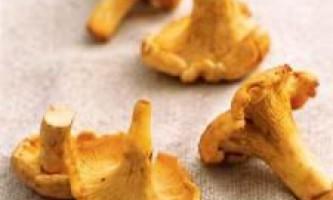 Сушені гриби. Як правильно сушити гриби.