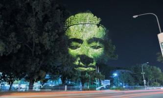 Світлова проекція `камбоджійські дерева`
