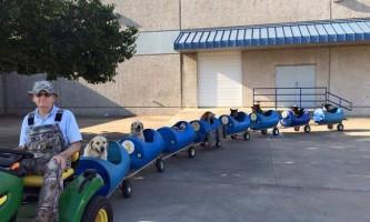 Американець побудував «паровозик» для бездомних собак