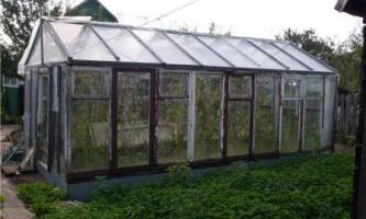 Теплиця зі старих віконних рам
