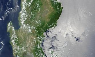 Тихоокеанський острів лусон населений величезною кількістю ендемічних млекопітающі