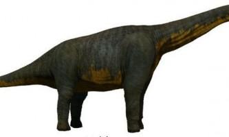 Титанозавра: паралітітан
