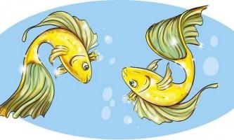 У риб виявили ознаки свідомості