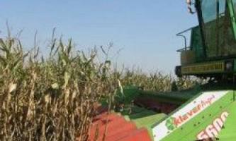 Збирання кукурудзи на зерно