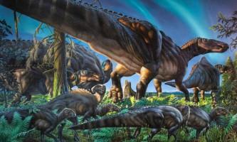 Вчені: на аляски виявлені останки арктичного утконосого динозавра, що жив 70 млн років тому
