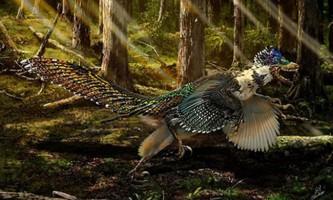 Вчені знайшли найбільшого пернатого і крилатого динозавра