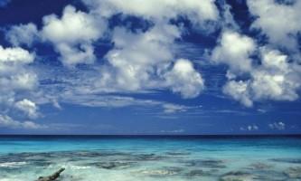 Вчені: планктон бере участь у формуванні хмар