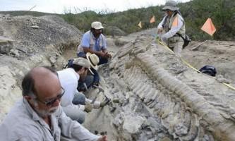 Вчені з усього світу шукають на вологодчіне останки динозаврів