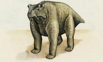 Вчені з`ясували, що деякі з динозаврів ходили на чотирьох ногах