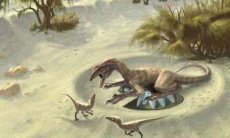 Вчені виміряли температуру тіла динозаврів