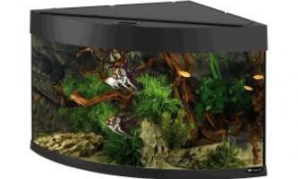 Кутовий акваріум