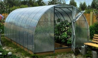 Догляд за теплицею з полікарбонату восени