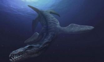 Ульяновський вчені приступлять до реставрації останків морського ящера